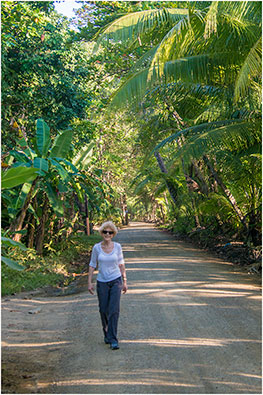 Afternoon Stroll in Costa Rica 2018 by Dr. Wayne Lynch